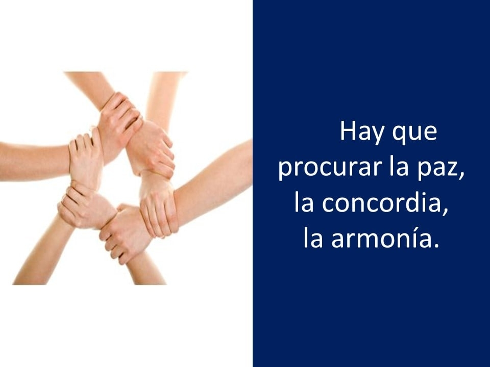 Domingo16Febrero2020_11