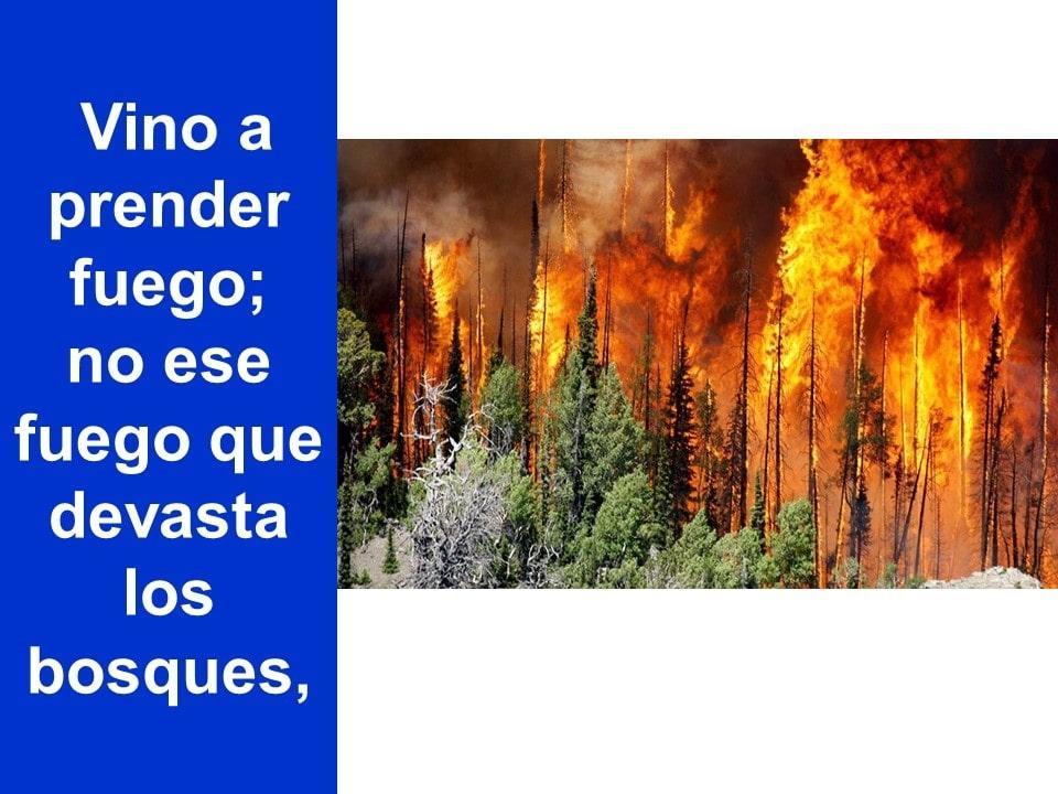 Domingo18agosto2019_09