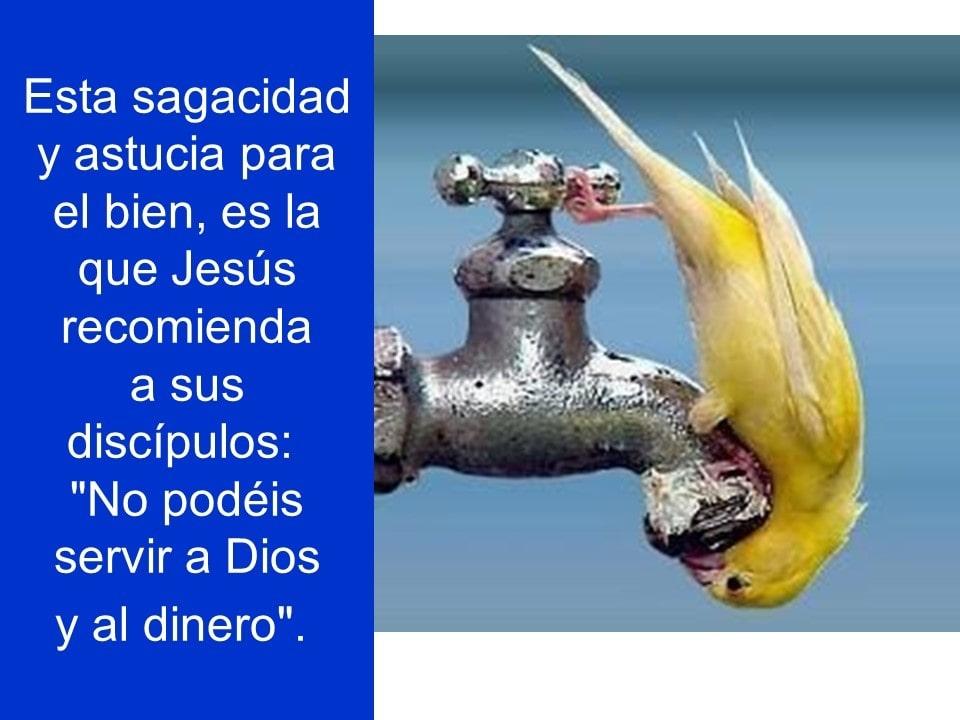 Domingo22septiembre2019_09