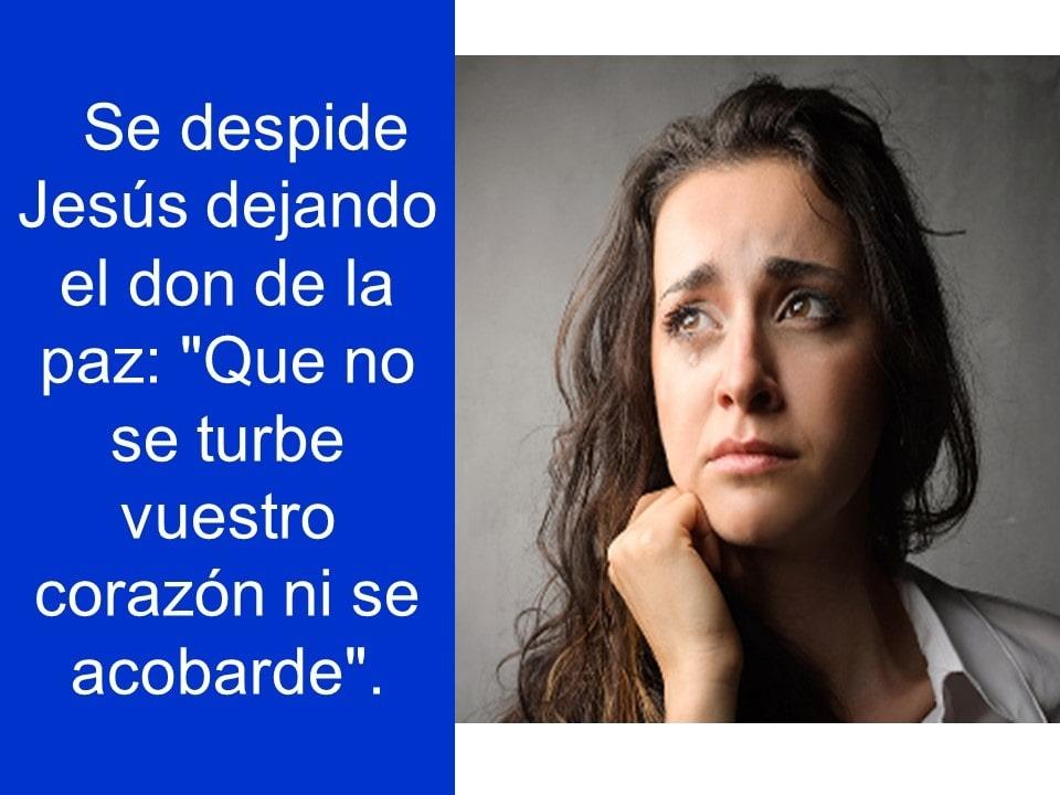 Domingo26mayo2019_12