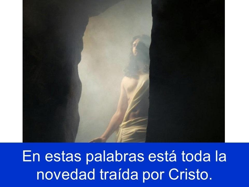 Domingo3noviembre2019_14