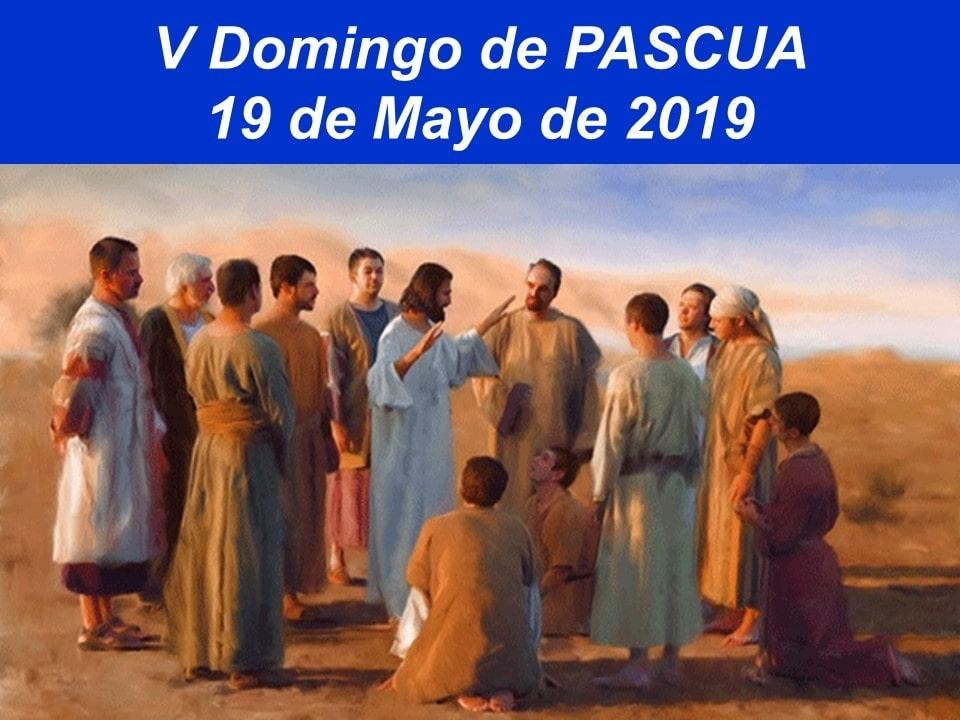 Domingo19mayo2019_01