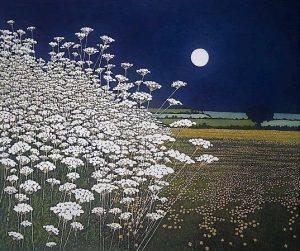 luna-nh-flores-phil-greenwood-300x251.jpg